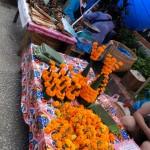 Flores para los templos