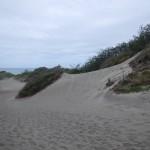 03 Sigatoka 048 Sand Dunes National Park 25